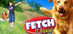 Fetch It Again